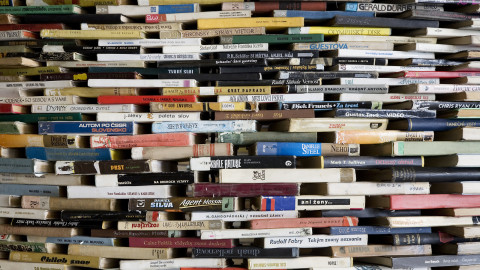 The Best You investigates, Do Self Help Books Really Help?