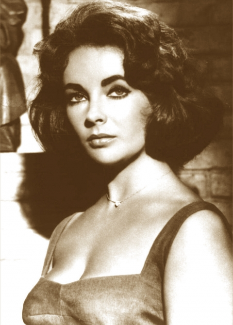 Rocky Road to Success: Elizabeth Taylor – Shine Bright Like A Diamond
