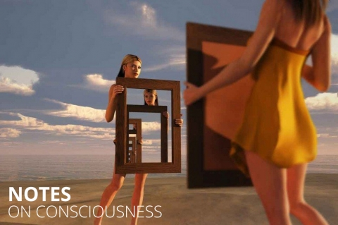 Notes  on  consciousness by Paula Goode