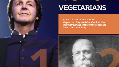 Top 6 vegetarians by The Best You