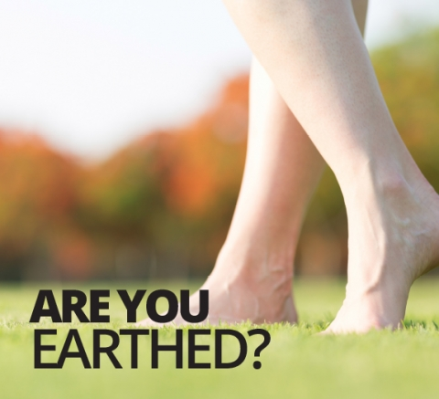 Are you earthed? by Patrick Holford