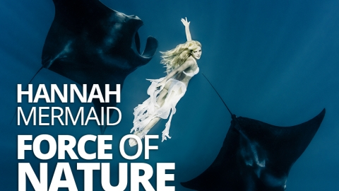 Hannah Mermaid – Force of Nature by The Best You