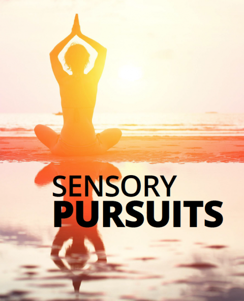 Sensory pursuits by Sam Red