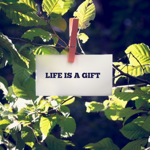 Life is a Gift – Share it Generously by Kieran Revell