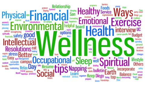 The Best You's Wellness in the Workplace survey 2013