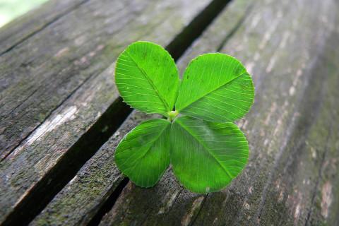 Making your own luck by Bernardo Moya