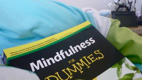 Mindfulness by Bernardo Moya