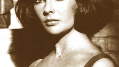 Rocky Road to Success: Elizabeth Taylor – Shine Bright Like A Diamond
