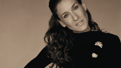 Sarah Jessica Parker: Success and The City
