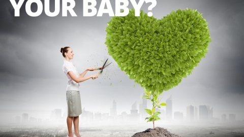 Is your business your baby? by Jo Haigh