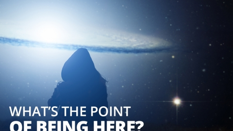 Dear LOA: What's The Point Of Being Here? by Melody Fletcher