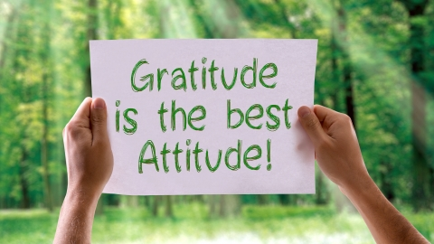 9 Essential Reasons to Cultivate an Attitude of Gratitude by Donald Latumahina