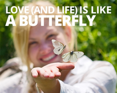 Love (and life) is like a butterfly by Miranda Leslau