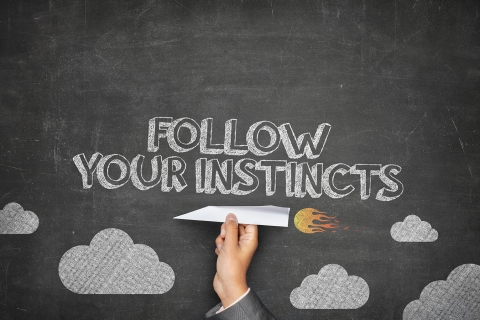 Follow your instincts by Malcolm Levene