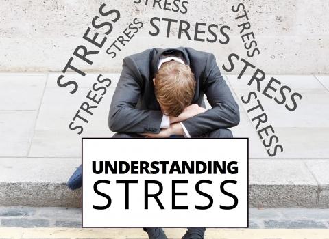 Understanding stress by Benjamin Bonetti