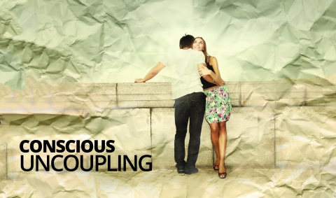 Conscious Uncoupling by Janet Murray