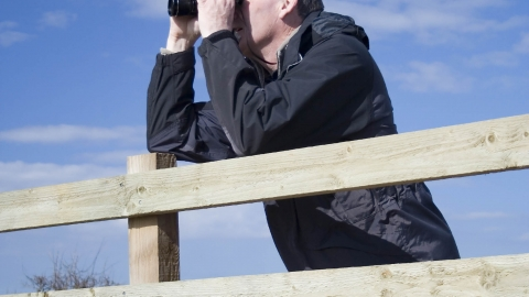 What does it take to be a bird-spotter?