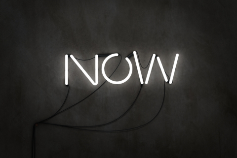 Now What? By Noel Plaugher