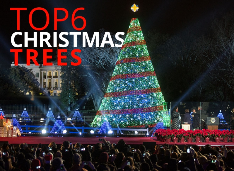 Top 6… Christmas trees by The Best You – The Best You Magazine